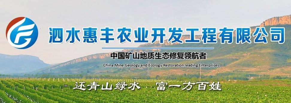 泗水惠丰农业开发工程有限公司