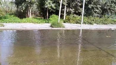污水管道未接通污水漫路、臭气熏天 行人出行受阻