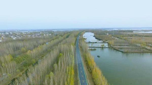 """环湖大道(微山段)元旦前通车 从济宁到微山多了条""""景观路"""""""