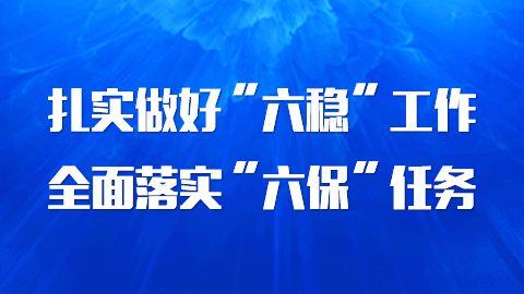 """傅明先:调整战术打法 精准靶向发力 坚决打赢""""六稳""""""""六保""""攻坚战"""