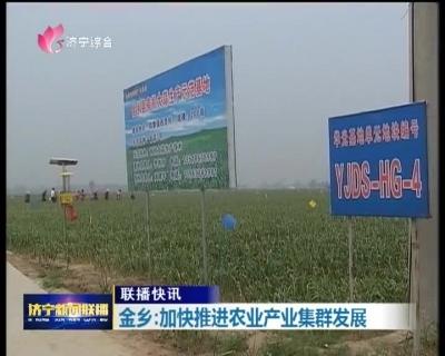 金乡:依托区位资源优势 加快推进农业产业集群发展