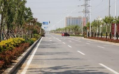 三季有花四季常绿 济宁城区10条新建道路完工绿化