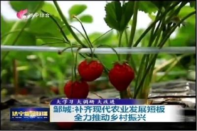 邹城:补齐现代农业发展短板 全力推动乡村振兴