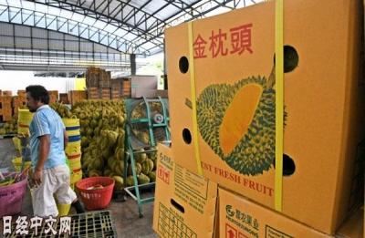"""""""水果之王""""俘获中国吃货 榴莲撼动亚洲消费版图"""