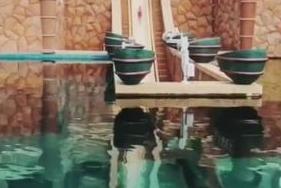 叶一茜晒森碟玩高难度水上项目 穿越鲨鱼池隧道
