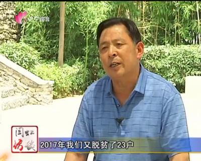 乡村振兴系列访谈:南仲都的美丽蝶变