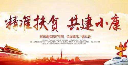"""金乡""""四+""""模式壮大第一书记村集体经济"""