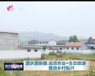 泗水泗张镇:高效农业+生态旅游 推动乡村振兴