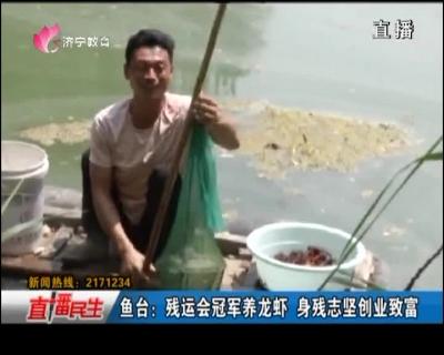 鱼台:残运会冠军养龙虾 身残志坚创业致富