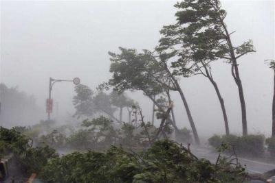 """两部委针对山东""""温比亚""""台风灾情启动国家Ⅳ级救灾应急响应"""