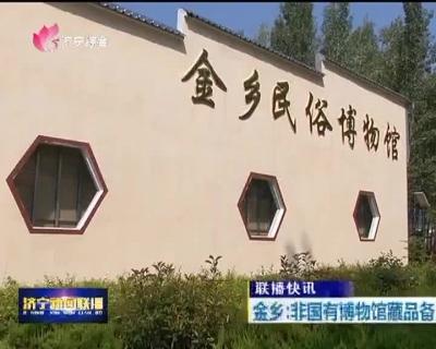 金乡:非国有博物馆藏品备案工作顺利完成