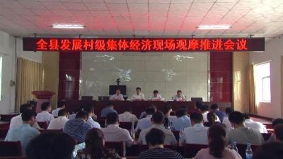金乡县召开村集体经济发展现场观摩推进会