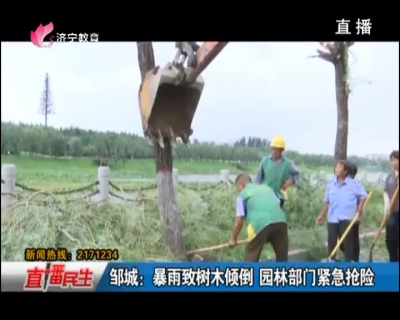 邹城:暴雨致树木倾倒 园林部门紧急抢险