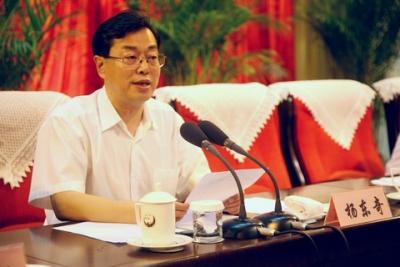 杨东奇:为乡村振兴提供坚强组织保证
