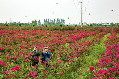 """嘉祥县供电公司:加强""""五查防控""""  攻坚迎峰度夏(组图)"""