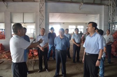 金乡召开第一书记村集体经济项目现场观摩会