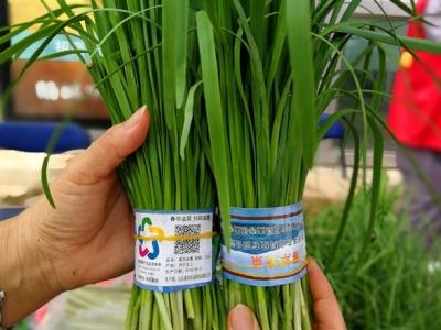 在全国科普日集中宣传活动现场,这位农民种的韭菜亮了!