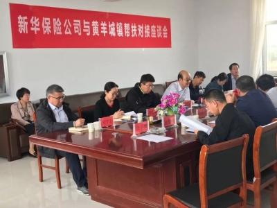 新华保险赴内蒙古自治区乌兰察布市察右中旗现场考察黄羊城镇对接帮扶项目