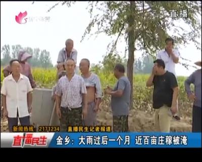 金乡:大雨过后一个月 近百亩庄稼被淹