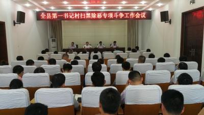 鱼台召开第一书记村扫黑除恶专项斗争工作会议