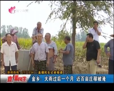 金乡:雨后一个月积水还未排出 近百亩庄稼被淹