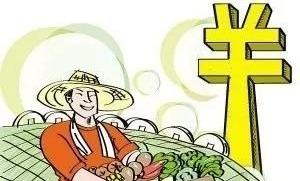 """惠农贷款""""很解渴"""" 济宁首笔鲁担惠农贷在金乡发放"""