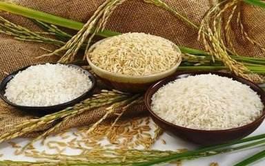 米和面谁更养胃?更利于减肥