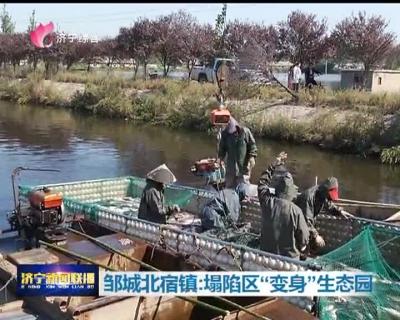 """邹城北宿镇:塌陷区""""变身""""生态园 人均增收2000元"""