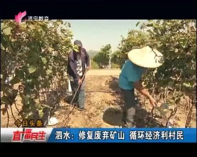 """泗水:废弃矿山变""""生态金山"""" 循环经济利村民"""