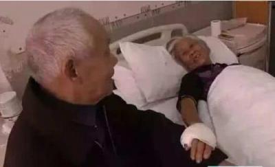 老伴住院92岁老人绝食7天 再见时一句话让人泪目