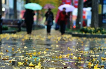 龙817日局部有小雨 下周最低气温8℃左右
