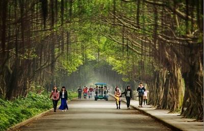 龙8:区域性森林城市格局初步形成