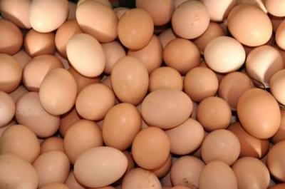 蛋价进入季节性下跌周期 买鸡蛋要便宜了