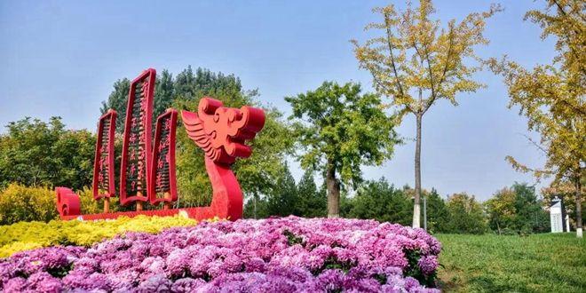 乐虎游戏官网高新区金秋菊展第九年!一起回忆那些赏花的时光