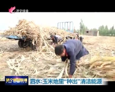 """技术创新变废为宝  泗水玉米地里""""种出""""清洁能源"""