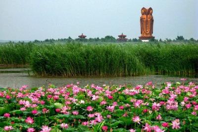 乐虎游戏官网10月份县市区生态环境保护工作考核结果公布