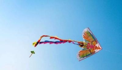 能飞的非遗——走进千亿国际886老手艺风筝
