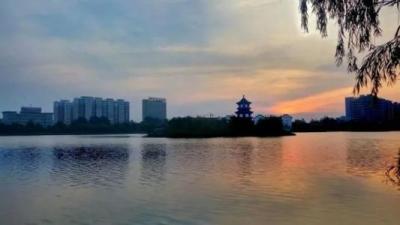 等你来提!鱼台县公开征集2019年为民办实事项目