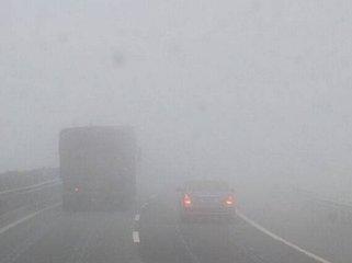 龙8市气象台发布大雾黄色预警 请注意防范