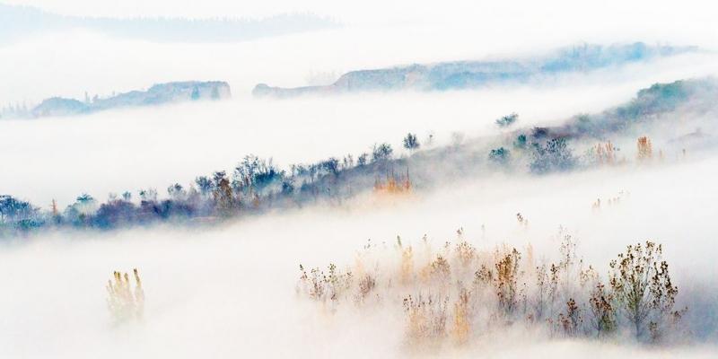 雾中美景 宛如仙境  这样的美景简直了!