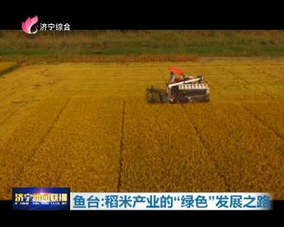 """鱼台:稻米产业的""""绿色""""发展之路"""