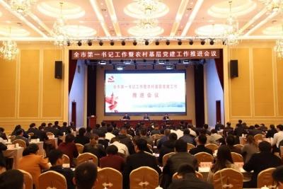 龙8市第一书记工作暨农村基层党建工作推进会议召开
