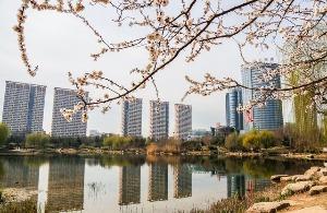 """在家挣钱的上榜""""中国大陆最佳商业城市"""""""