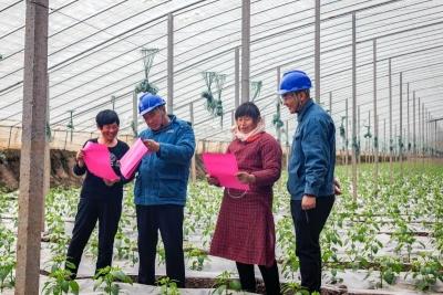 嘉祥县供电公司:零距离服务蔬菜大棚 助民增收
