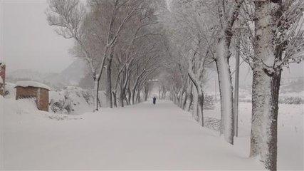 中央气象台发布暴雪蓝色预警 北京局地7厘米以上
