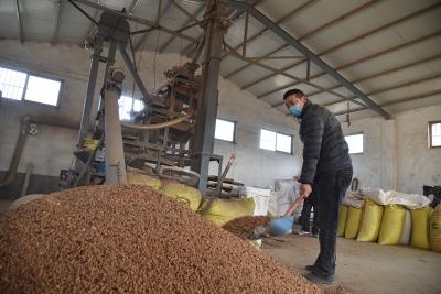 中国药材加工第一村:形成品牌优势,全力促进乡村振兴
