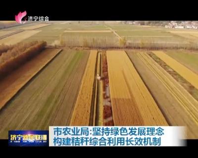 市农业局:对峙绿色生长理念  构建秸秆综合使用长效机制