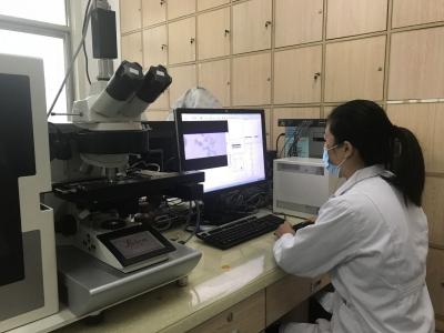 前10个月,龙8确诊染色体异常胎儿100例