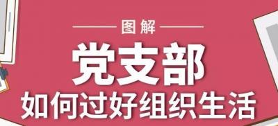 图解党支部如何过好组织生活