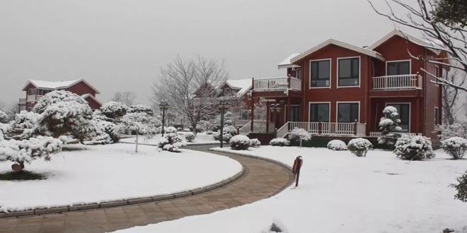 初雪,在微山岛景区与您相遇